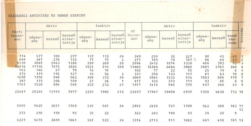 1980. évi népszámlálás számítógéppel készült feldolgozási táblája (részlet) aktív és inaktív keresők Székesfehérváron, nemek szerinti bontásban.